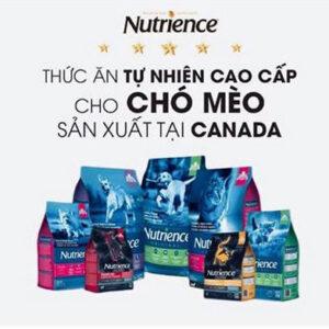 NUTRIENCE CANADA