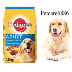 petcare6886